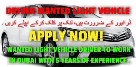 DRIVER WANTED LIGHT VEHICLE