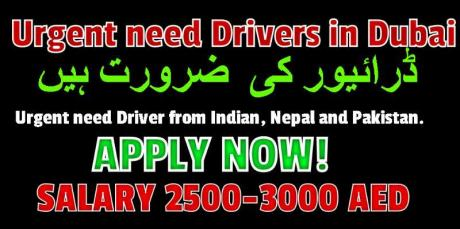 Urgent need Drivers in Dubai
