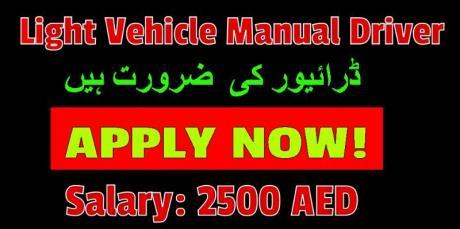 Light Vehicle Manual Driver Cum helper